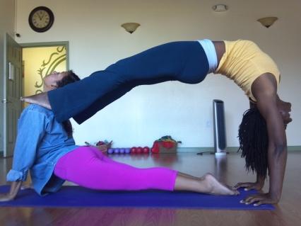 The duality of the yogi